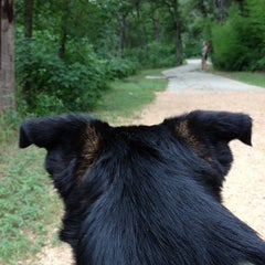Photo taken at Shoal Creek Dog Park by Caitlyn B. on 6/14/2013