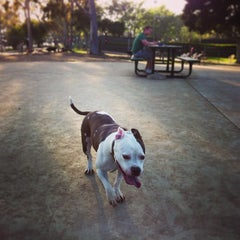 Photo taken at Costa Mesa Bark Park by Ramy R. on 3/15/2013