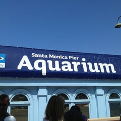 Photo taken at Heal the Bay's Santa Monica Pier Aquarium by Jason O. on 6/10/2013