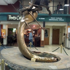 Photo taken at Reno-Tahoe International Airport (RNO) by Jeff M. on 10/13/2012