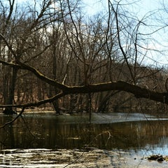 Photo taken at Muckshaw Pond by Rebecca B. on 3/27/2013