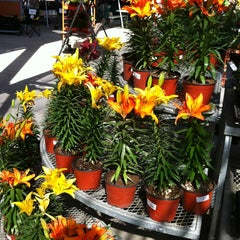 Photo taken at The Home Depot by Javier H. on 12/29/2012