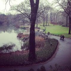 Photo taken at Central Park Duck Pond by Matthew K. on 1/12/2013