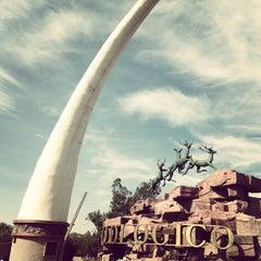 Photo taken at Zooleón by Alvaro on 12/30/2012