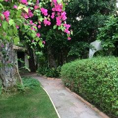 Photo taken at Huerto del Cura by Inga W. on 5/5/2015