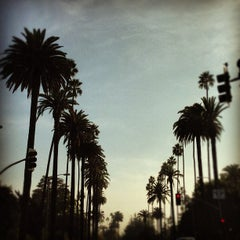 Photo taken at Beverly Hills Hotel by Stephanie H. on 11/26/2012