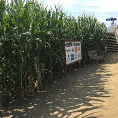 Photo taken at Cherry Crest Adventure Farm by Dean B. on 8/18/2015
