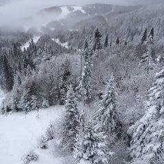 Photo taken at Le Westin Resort & Spa, Tremblant, Quebec by EDMfit on 12/21/2013
