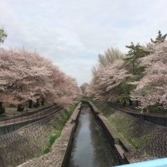Photo taken at 尾崎橋 by ヒカル on 4/8/2016
