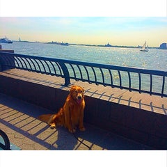 Photo taken at Battery Park City by Clare H. on 6/11/2015