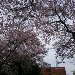 Photo taken at 文化放送川口送信所 by ko T. on 4/3/2016