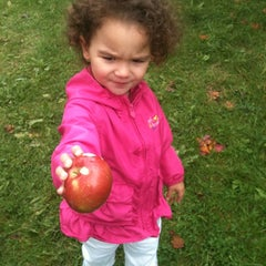 Photo taken at Adams Apple Orchard and Farm Market by Dianna G. on 10/7/2012