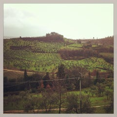 Photo taken at Castello di Nipozzano by Savva 🍷 E. on 3/18/2013