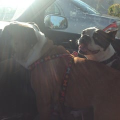 Photo taken at Barkers Pet Center by Lauren F. on 12/27/2013