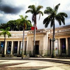 Photo taken at Museo de Ciencias Naturales de Caracas by Katy Chisholm M. on 4/23/2013