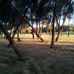 Photo taken at Pinar Conde de Orgaz by Perico d. on 6/4/2013