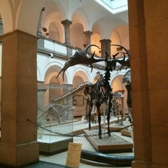 Photo taken at Paläontologisches Museum by Johnathan C. on 7/22/2014