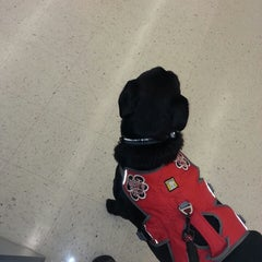 Photo taken at Hobby Lobby by Kevin H. on 3/3/2014