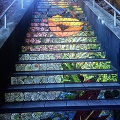 Photo taken at Hidden Garden Mosaic Steps by Darlene S. on 11/29/2015