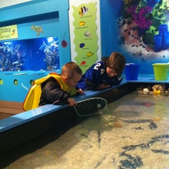 Photo taken at Oregon Coast Aquarium by Sachi B. on 11/20/2012