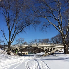 Photo taken at Central Park - Gothic Bridge by j C. on 1/22/2014