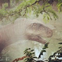 Photo taken at Columbus Zoo & Aquarium by Ryan P. on 6/8/2013