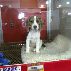 Photo taken at Uncle Bill's Pet Store by Donna Q. on 10/10/2012