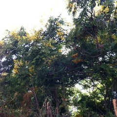 Photo taken at Garden between Rothschild st. and HaGra st. by Yair L. on 10/13/2012