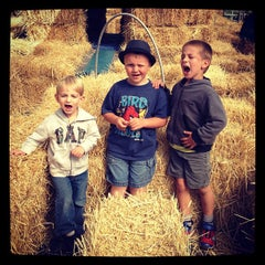 Photo taken at Beans & Greens Farmstand by Lani V. on 9/8/2013