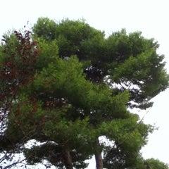 Photo taken at Giardini by Antonis B. on 9/14/2012