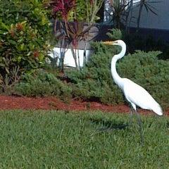 Photo taken at Estero, FL by Richard D. on 5/11/2014
