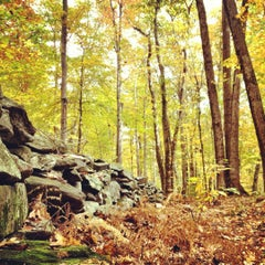 Photo taken at Moore State Park by Rafael S. on 11/10/2012