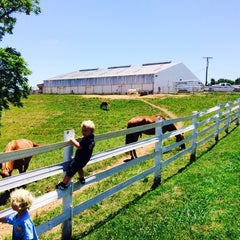 Photo taken at Ellington Agriculture Center by Patricia L. on 7/5/2014