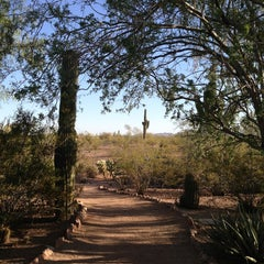 Photo taken at Desert Botanical Garden by Erica M. on 6/6/2013