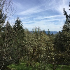 Photo taken at Spencer Butte Park by Kim on 3/30/2015