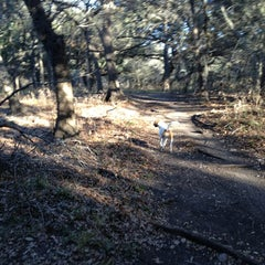Photo taken at McAllister Park by Morgan B. on 2/16/2013