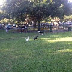 Photo taken at Al Lopez Dog Park by Scott on 8/26/2014