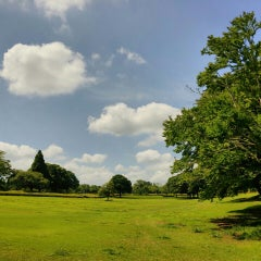 Photo taken at 千葉市昭和の森公園 by 「た」 on 6/20/2015
