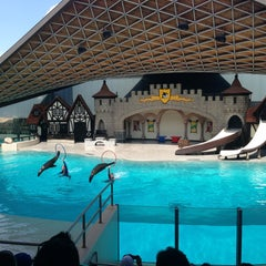 Photo taken at Marineland by Lika S. on 8/19/2013