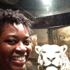 Photo taken at Museum of Nature & Science by Charrese on 7/19/2014
