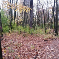 Photo taken at Downer Woods by VazDrae L. on 10/14/2012