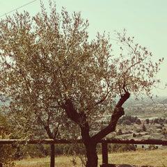 Photo taken at Agriturismo Castello by natasha e. on 9/17/2012