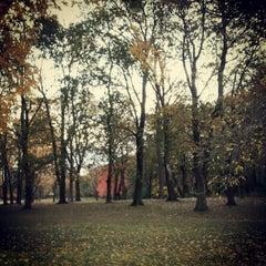 Photo taken at Adler Memorial Park by Mitzi L. on 10/19/2012