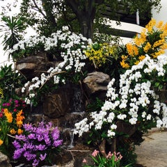 Photo taken at Siam Orchid Center (ศูนย์กล้วยไม้สยาม) by Thicha on 12/6/2014