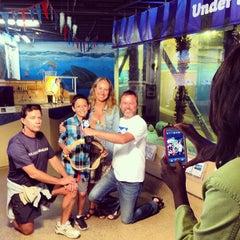 Photo taken at Heal the Bay's Santa Monica Pier Aquarium by Heal the Bay on 9/18/2013