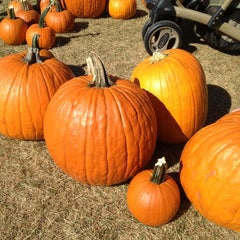 Photo taken at F&W Schmitts Farm by Michelle Nicole M. on 10/20/2013