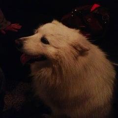 Photo taken at Sharlene's by Jessica B. on 12/1/2012