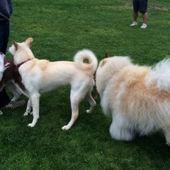 Photo taken at St. Mary's Park Dog Run by Donnie B. on 7/23/2015