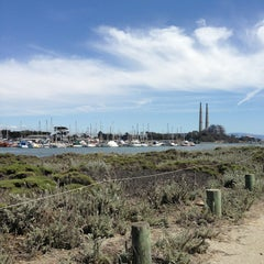 Photo taken at Moss Landing State Beach by Ryan M. on 5/26/2013