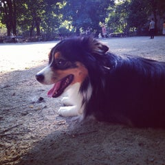 Photo taken at Tompkins Square Park Dog Run by reece p. on 7/8/2013